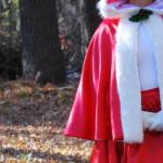 Best Christmas Halloween Costumes