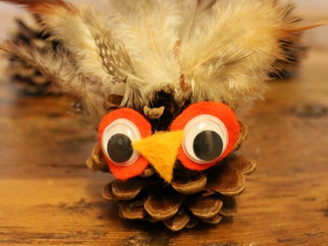 Pine Cone Owl Featured