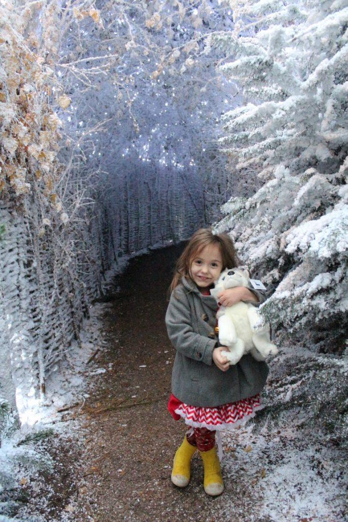 Inside Lapland UK