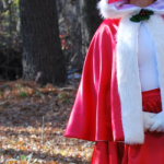 Best Christmas Halloween Costumes