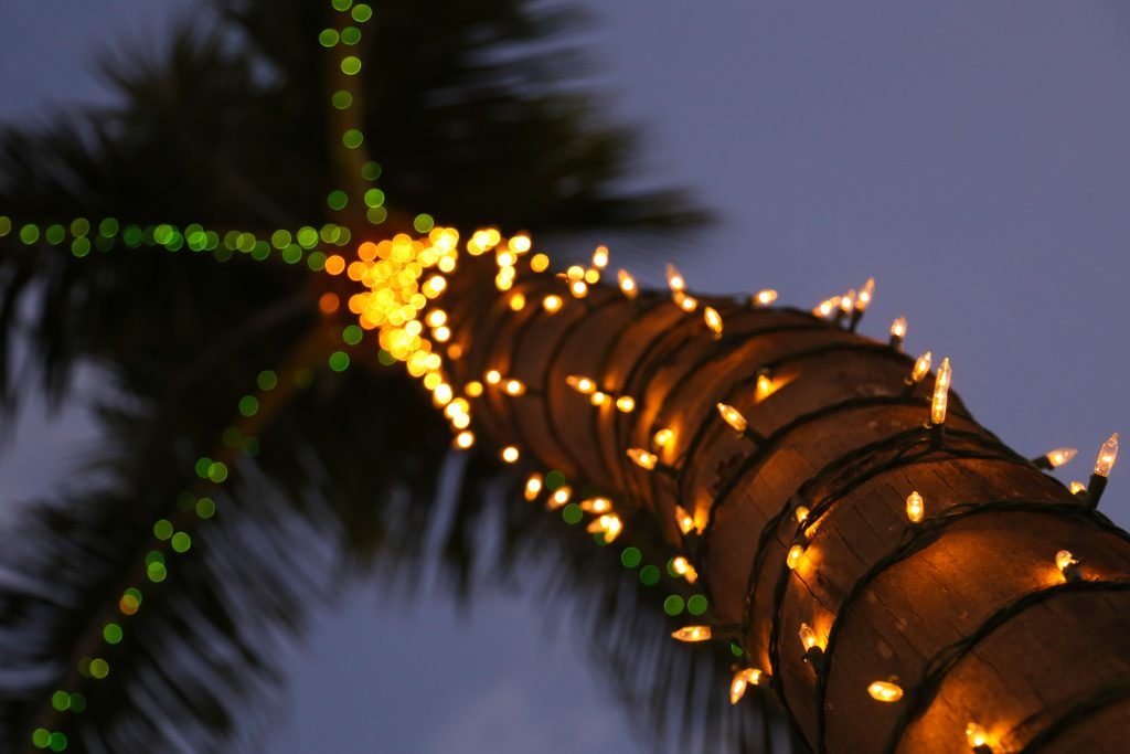 Christmas Traditions of Hawaii 1